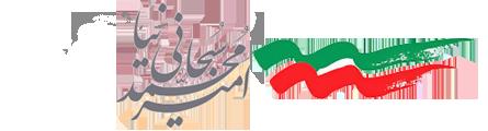 آرشیو - امیر محمد سبحانی نیا
